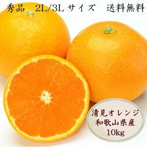 清見オレンジ 10kg 清見 オレンジ 秀 L 2L 3L サイズ 国産 和歌山県産 愛媛県産 シェア用 贈答品用 送料無料 訳ありではありません 清美