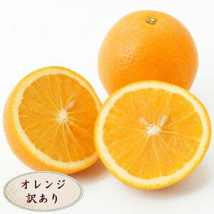 【訳あり】オレンジ ネーブル バレンシア 5玉 輸入 アメリカ産 カリフォルニア産 オーストラリア産 お試し 訳あり B品