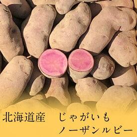 【1キロ】北海道産 ノーザンルビー ピンク カラフル じゃがいも 1kg ジャガイモ じゃが芋 希少【ラッキーシール対応】