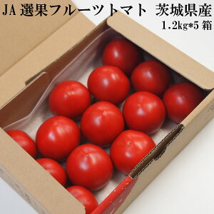 【6kg】糖度7度以上 フルーツトマト 1.2kg*5箱(6kg) (8〜15玉入*5箱) 茨城県産 ギフト 手土産 贈答用 おすすめ JA 高糖度 高品質 送料無料 フルーツ トマト 甘い 濃い コク 夏野菜 安心 安全 美味しい
