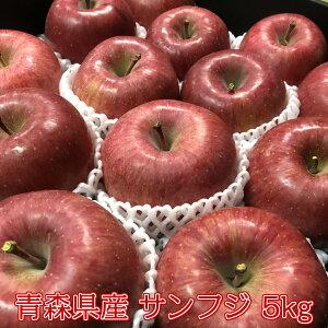 【秀5キロ】りんご サンふじ 5kg 糖度12度以上 リンゴ 林檎 ふじ 青森県産 フルーツ お歳暮 御歳暮 贈答品用 送料無料 JA 光センサー選果 訳ありではありません お歳暮