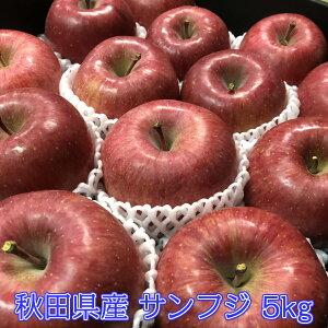 【秀5キロ】りんご サンふじ 5kg リンゴ 林檎 ふじ 秋田県産 フルーツ お歳暮 御歳暮 贈答品用 送料無料 光センサー選果 訳ありではありません お歳暮