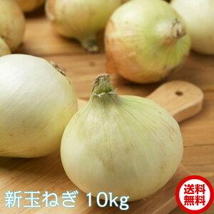 【緊急スポット】【10キロ】新玉ねぎ 佐賀県産 10キロ 大玉 訳あり品ではありません コロナ 応援 食品 新 玉ねぎ 玉葱 たまねぎ L〜2Lサイズ