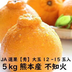 【秀5キロ】不知火 約5kg 大玉 12玉~15玉入 熊本県産 JA JA熊本 ご家庭用 贈答品用 送料無料 訳ありではありません