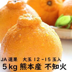 【5キロ】不知火 約5kg 大玉 12玉~15玉入 熊本県産 JA JA熊本 ご家庭用 贈答品用 送料無料 訳ありではありません