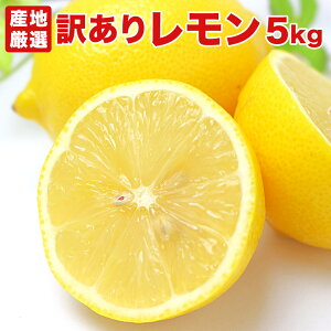 【訳あり5キロ】レモン 5kg Lemon 輸入 アメリカ産 カリフォルニア産 カルフォルニア産 チリ産 産地厳選 お試し 訳あり B品 送料無料【ラッキーシール対応】