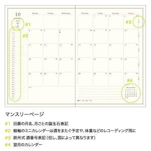 【ご予約8月中旬入荷】MATOKAマトカ2022年版(2021年10月始まり)手帳/ダイアリー|B6サイズウィークリー・ブロック式(週間ブロック・日記帳)『ワンポイントトリケラトプス/POINTTRICERATOPS』