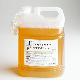 【JAMES MARTIN】ジェームズマーティン 薬用泡ハンドソープ 詰め替え用 5kg 液体せっけん 液体石鹸 リキッドソープ 泡ボトル ムース フォーム 除菌 消臭食中毒 ウィルス対策 殺菌
