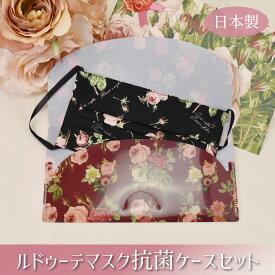 日本製 マスク 洗える 送料無料 個包装 抗菌ケース セット プチギフト 大人用 女性用 風邪 花粉 対策 通勤 通学 買いまわり 2000円ポッキリ