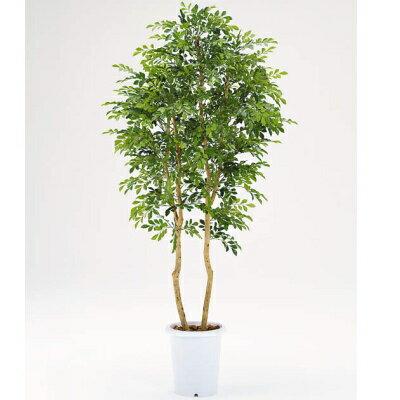 【メーカー直送 代引不可】人工植物 【シルクジャスミン】180cm CK-246