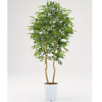 【メーカー直送 代引不可】人工植物 【シルクジャスミン】150cm CK-245