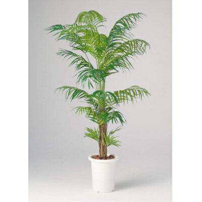 【メーカー直送 代引不可】【送料無料】 人工植物 【アレカヤシ】135cm GB-237