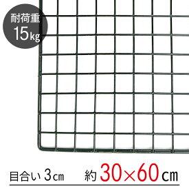 ワイヤーネット 黒 30×60