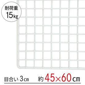 ワイヤーネット 白 45×60
