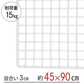 ワイヤーネット 白 45×90