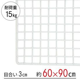 ワイヤーネット 白 60×90