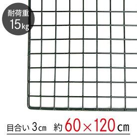 【大型便・時間指定不可】 ワイヤーネット 黒 60×120