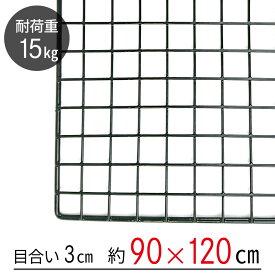 【大型便・時間指定不可】ワイヤーネット 黒 90×120