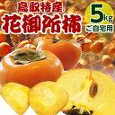 花御所柿(優品)5kg 2〜3Lサイズ(18〜30個) 柿 鳥取産かき 送料無料
