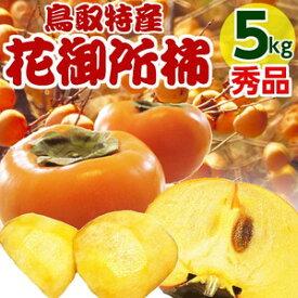 花御所柿 5kg 秀品 ご進物用 2L〜3Lサイズ (16〜28個) 柿 鳥取産かき 送料無料