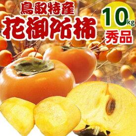 花御所柿 10kg 秀品 ご進物用 (32〜48個) 柿 鳥取産かき 送料無料