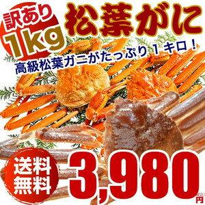 松葉ガニ(カニ 蟹 かに)1キロ 訳あり わけあり(松葉ガニ/松葉蟹)鳥取産 約1キロ詰(2〜4枚入)