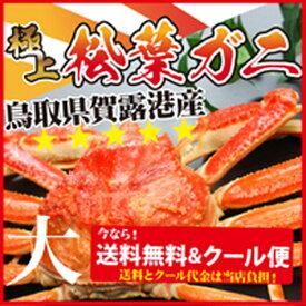 大サイズ松葉蟹(鳥取松葉ガニ/松葉蟹)750〜850g《大サイズ》×1枚]活orボイル≪送料無料≫[お歳暮 旬 カニ 蟹 かに