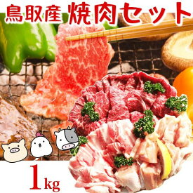 鳥取県産 焼き肉セット 1キロ(3〜5人前)牛肉 豚肉 鶏肉 バーベキューセット BBQ