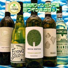 【送料無料】ナチュラルワイン入門の決定版!! 白ワイン5本セット 自然派 ビオ オーガニック 初心者も安心 デイリー 全部フランス 天然酵母 自然酵母 オーガニック 南フランス ゴールデンウィーク<沖縄・北海道は除きます>