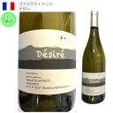 自然派白ワイン ヴァンサン・トリコ デジレ 自然派ワイン ナチュール フランス オーヴェルニュ 白 ワイン 中重口 Diony シャルドネ 100%
