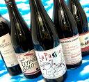 【送料無料】ナチュラルワイン入門の決定版!赤ワイン5本セット 自然派 ビオ オーガニック 初心者も安心 デイリー フランス ゴールデンウィーク 天然酵母 自然酵母 南フランス
