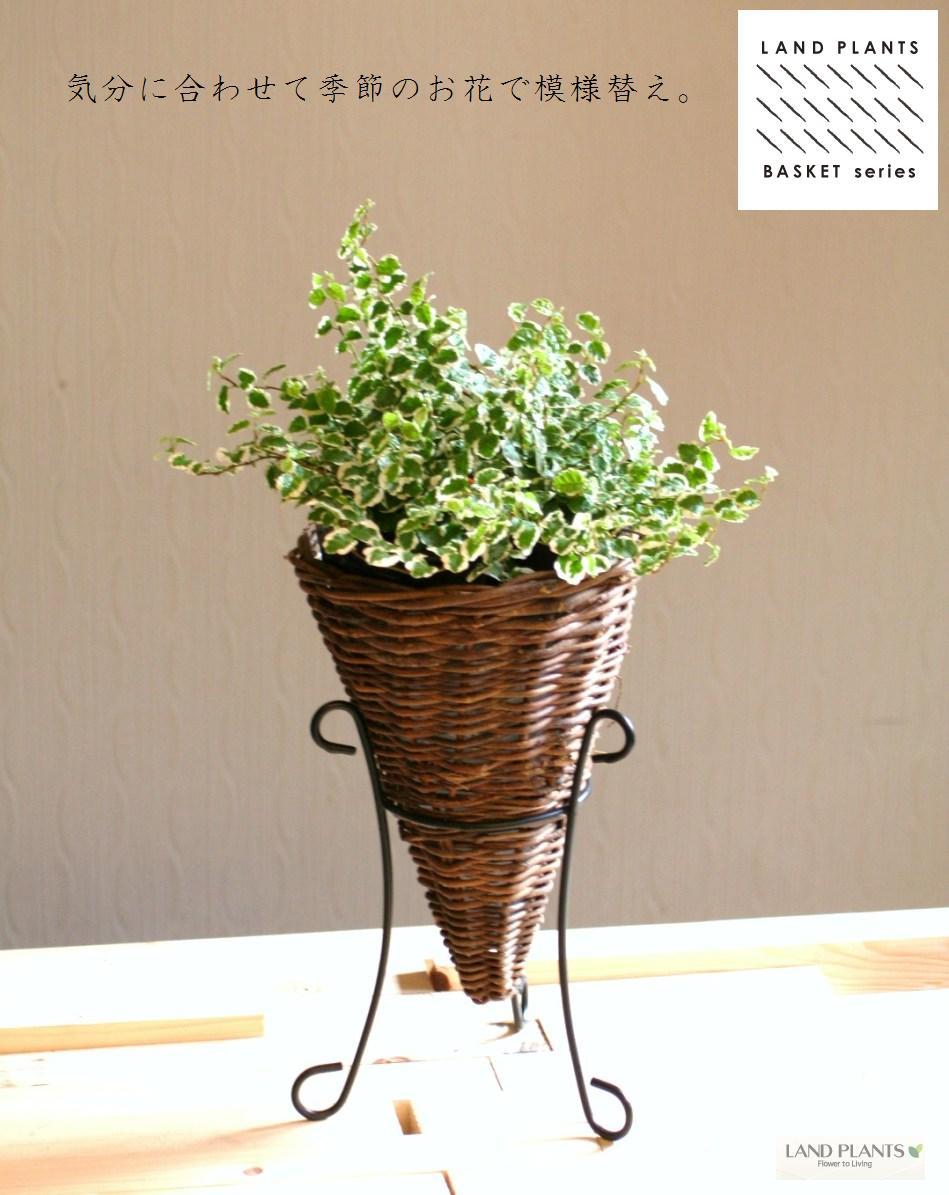 【 鉢カバー 】 【SALE】 おしゃれな三角コーン型 アイアンスタンドの鉢カバー 敬老の日 ポイント消化 観葉植物