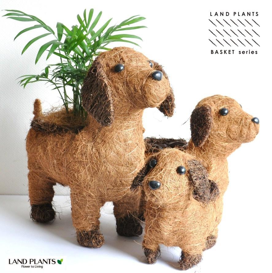 ワンちゃん バスケット Mサイズ 天然素材でつくられた 2色でできた イヌのバスケット♪ 犬 敬老の日 ポイント消化 観葉植物