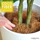 【 観葉植物 化粧材 】 ヤシ繊維 ココファイバー 100g ココヤシファイバー【母の日ギフト】