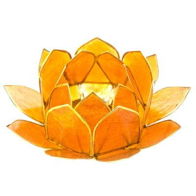 【あす楽】貝製 キャンドルホルダー (サイズ大) ロータス / 蓮 オレンジ バリのアジアン貝細工 キャンドル立て アロマキャンドル ろうそくスタンド シェル アジアン雑貨 バリ雑貨 バリ島