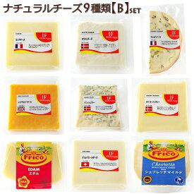 ナチュラルチーズ 9種類 各100g 【Bセット】シェブレッテ|エダムハード|ダニッシュブルー|ホワイトチーズ|コンテヤングイギリスレッドチェダー|グリエール|クリーミーハバティ|フルムダンベール