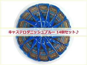 【14個セット◆】キャステロ ダニッシュブルー チーズ 100g×14パック デンマーク産※離水しやすい商品です|青かび|キャステロブルー|大容量|まとめ買い|業務用|大人買い|パック