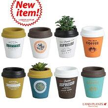 【8カラー】コーヒーカップ型陶器鉢Mサイズ3号・4号・植木鉢・底穴あり・フラワーポット