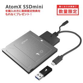 Angelbird ATOMX SSD MINI500GB(ATOMXMINI500PK)