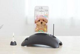 期間限定 50%ポイントバック ペットト スマートフォン いつでも おはなし おいのり モーション ポートレート機能 ローソク立て ローソク付き 写真 動く ペット 瀬戸陶器使用 縦置き 横置き スマホ ペット供養 黒