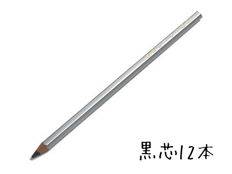 【名入れ対象商品】硬筆かきかた鉛筆2B シルバー軸