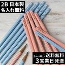 【日本製】【3営業日発送】 名入れ 鉛筆 2B パステルカラー鉛筆 ブルー ピンク ダース 名前入り ネーム入り 無料 えん…