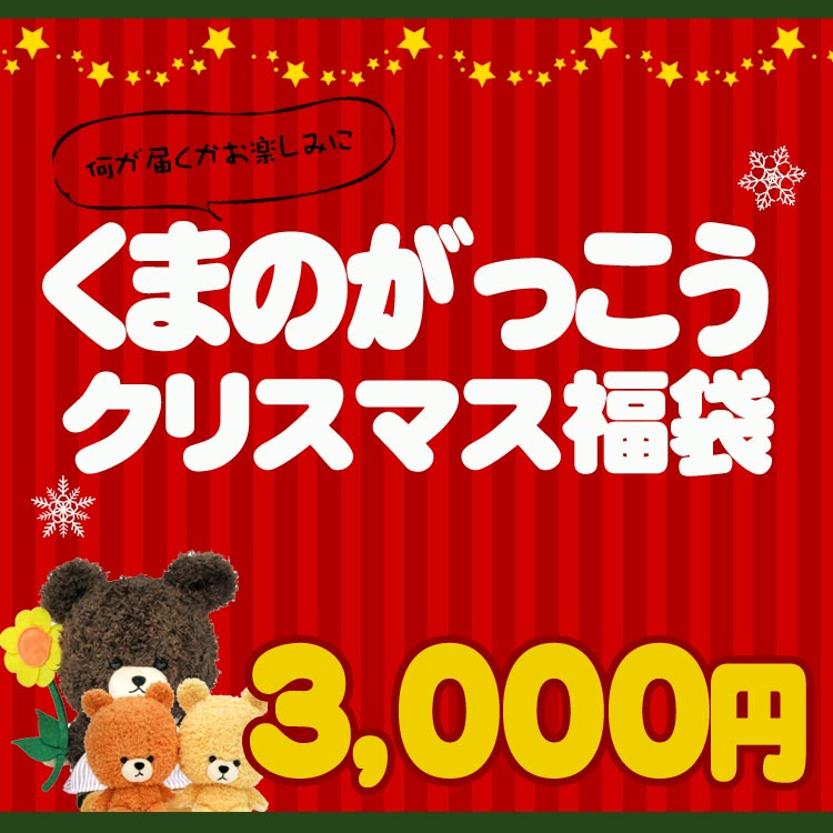 【11/15以降〜出荷】【クリスマスの袋入り〔xwrap31〕】【福袋・ラッピング不可】●1663【くまのがっこう】クリスマス福袋