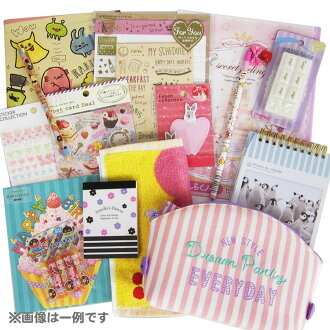 -851 fancy stationery bags