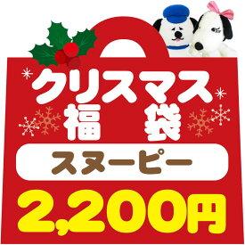 福袋1690スヌーピークリスマス福袋 【ラッピング不可】
