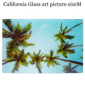 ガラス アート ピクチャー M−H (壁掛け) パームツリー ヤシの木 空 ビーチ 横幅40cm サーフ系 おしゃれ壁掛け 海 カリフォルニア 西海岸風 インテリア アメリカン雑貨