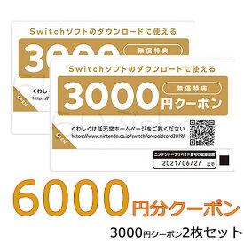 ニンテンドープリペイドカード6000円分(3000×2枚)Nintendo Switchダウンロードクーポン番号※キャンセル不可