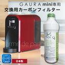 Gauraminifilter-01