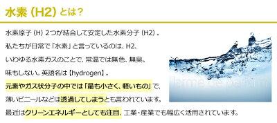 【煩わしい工事の手配代行します!】水道直結型水素水生成器メーカー公認店正規品日本製水素水サーバー家庭で健康美容ガウラH2GAURA(エイチツーガウラ)【ポイント10倍】【送料無料】冷水も熱湯も水道水が水素にウォーターサーバー