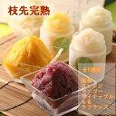 夏季限定 ルピノー 枝先完熟 凍らせタイプの フルーツ シャーベット 9個入り